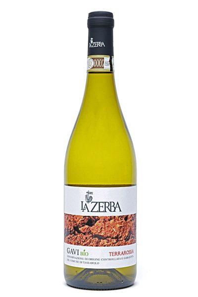 """Bild von Gavi DOCG """"Terrarossa"""", 2020 aus Italien im Weinkeller Berlin"""